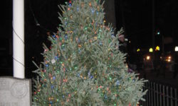 The Throggs Neck Merchants Association Christmas Tree