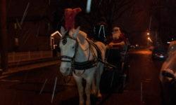Waterbury LaSalle Annual Christmas Tree Lighting