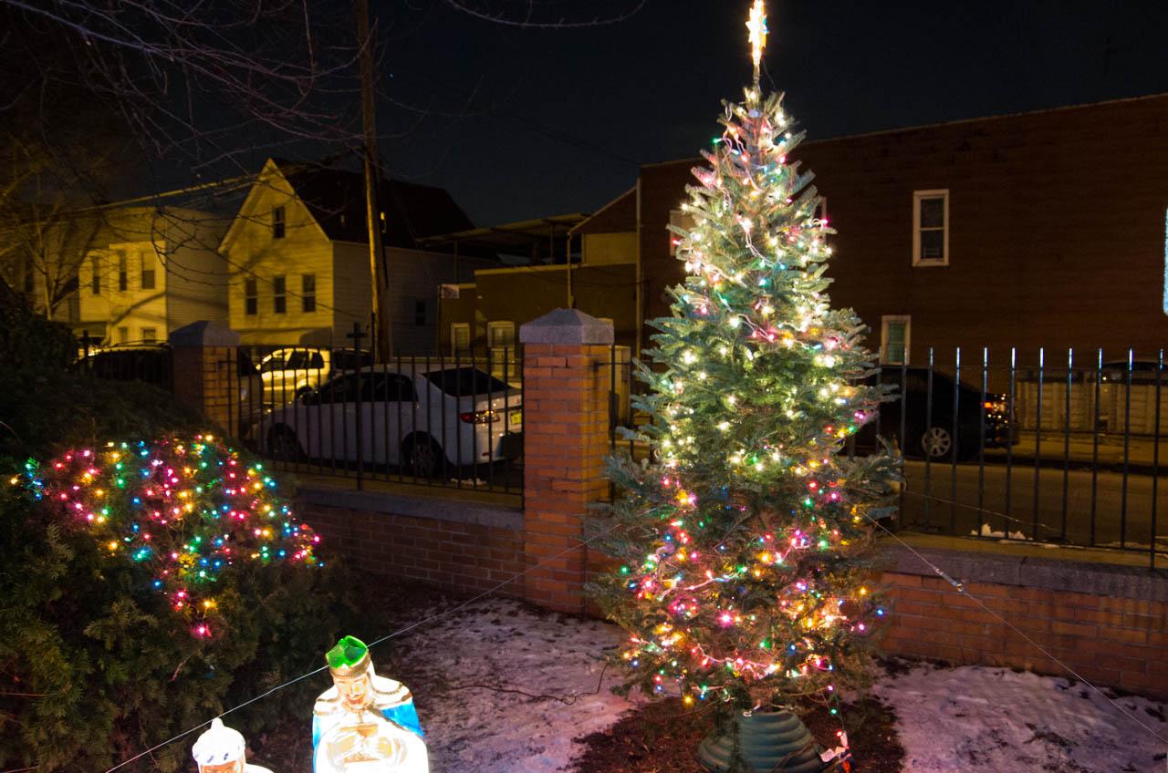 Van Nest Christmas Tree Lighting