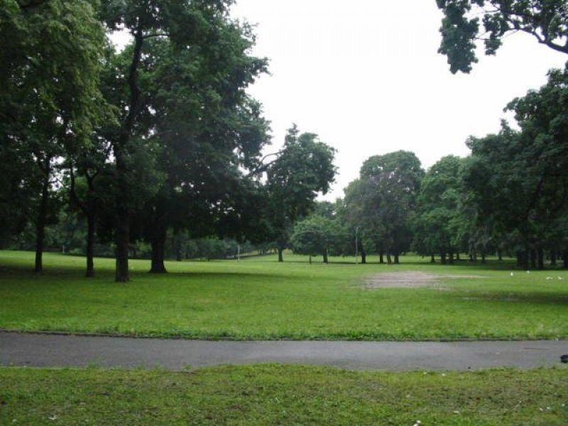 Bronxites Split on 'Going Green' Initiative