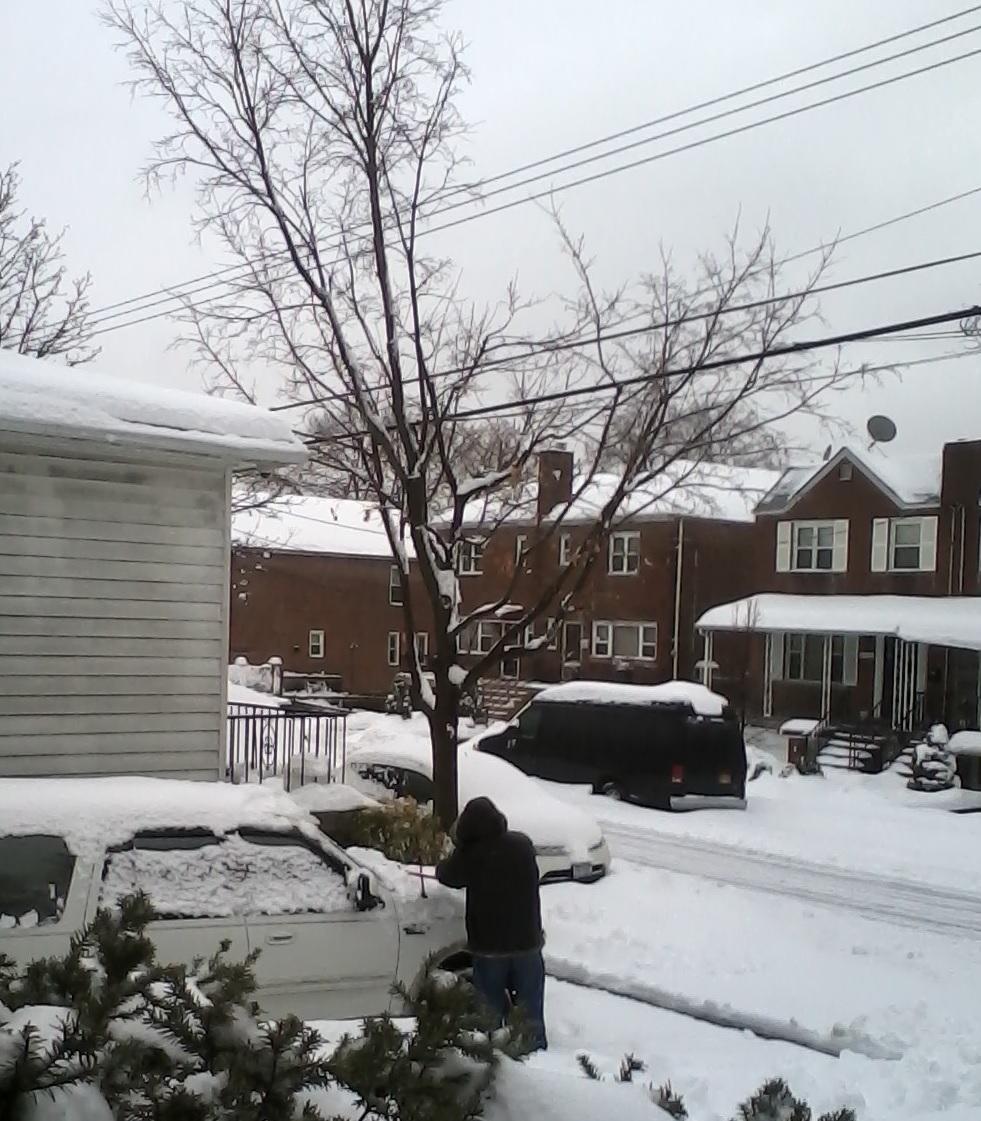 Schools Open As Heavy Snow Hits Bronx Commute