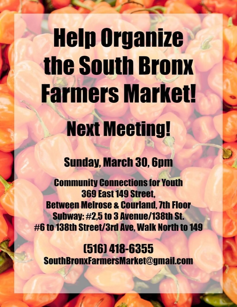 South Bronx Farmers Market
