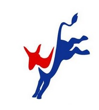 Bronx Young Democrats Meet Tonight To Discuss Joining National Organization As An Official Chapter