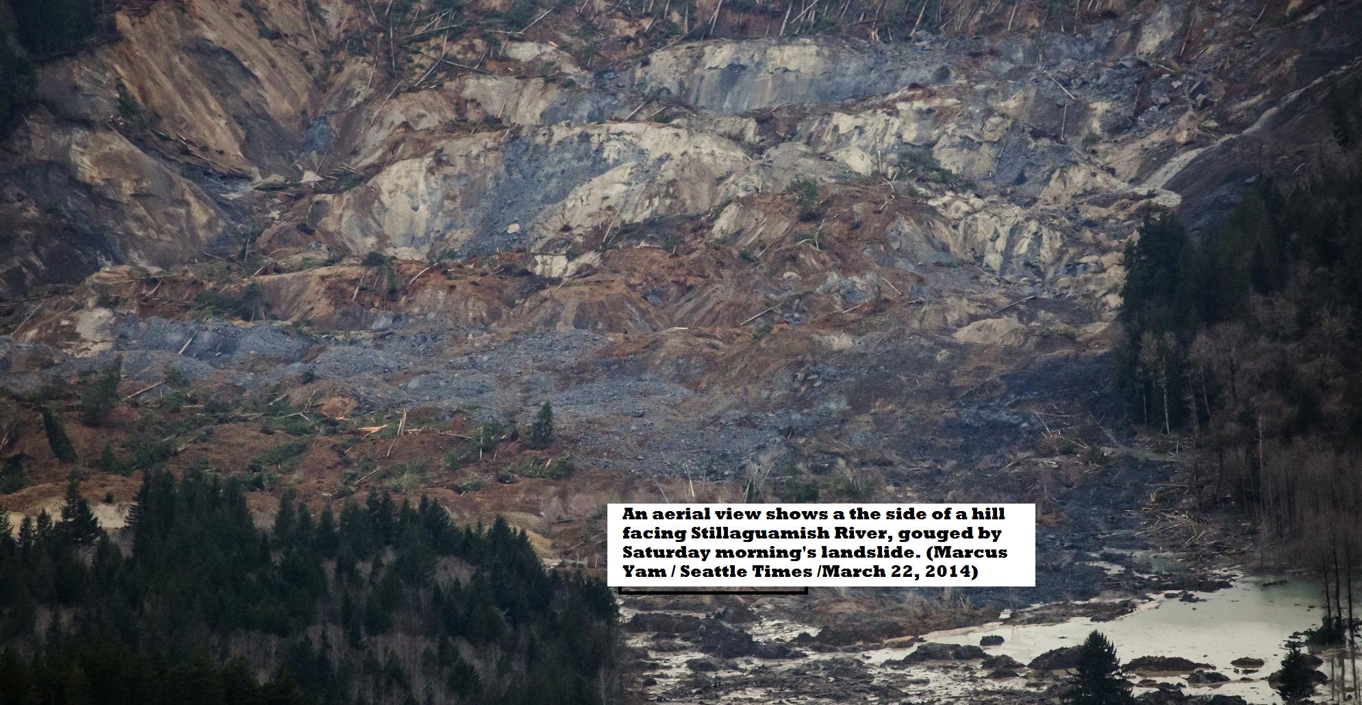 8 Dead In Massive Mudslide North Of Seattle