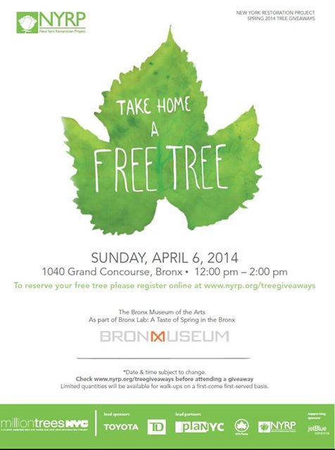 More FREE Trees