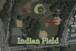 PHOTO 1_Indian Field