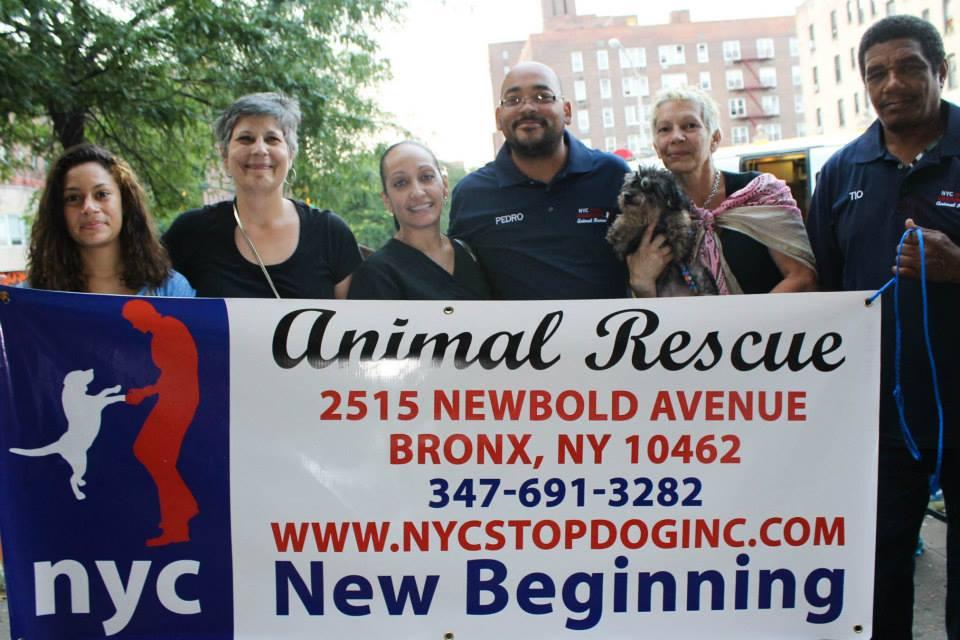 The awesome NYC Top Dog at Hugh Grant Circle c/o Nilka Martell
