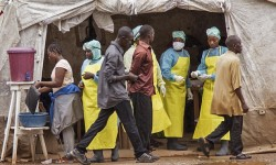 Patient Zero Identified in Ebola Outbreak