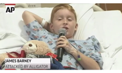 Cute Kid Who Grabbed Alligator Recovering Successfully