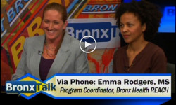 Last Night's BronxTalk: Public Health In The South Bronx