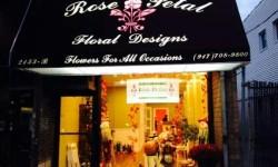 Grand Opening – Rose Petal