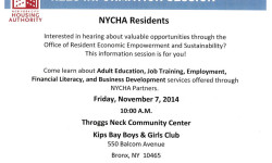 REES Info. Session at Throggs Neck Houses