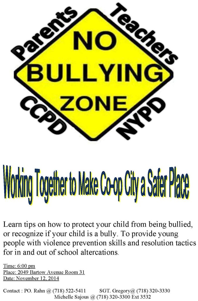 no_bully_zone_flyer