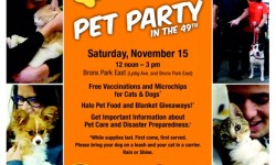 Pet Party in the 49th