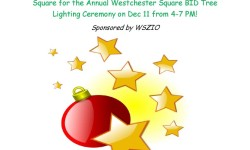 Westchester Square Library Holiday Ornament Workshop