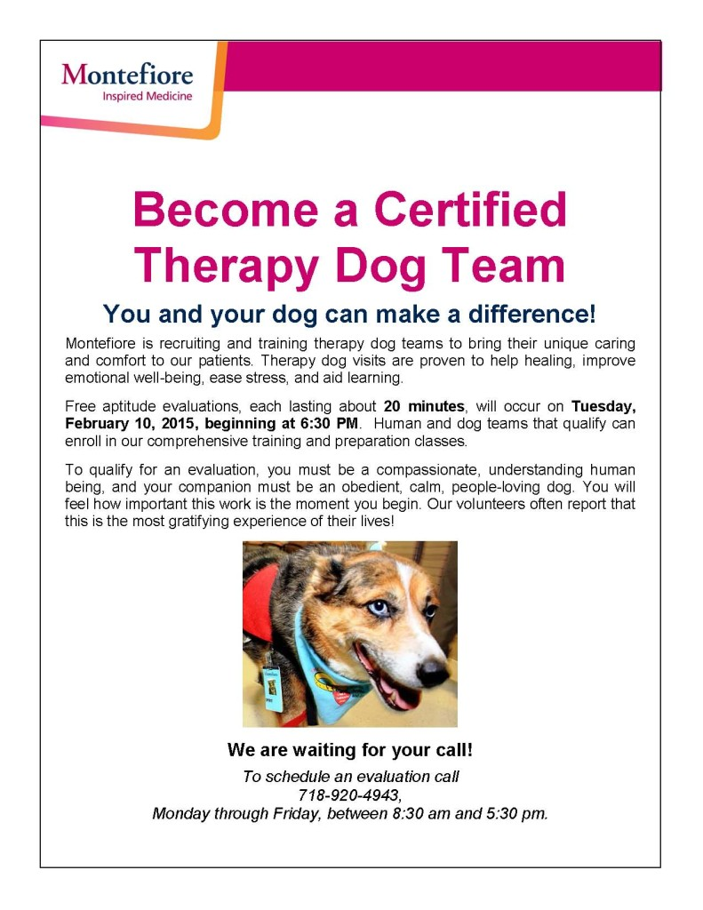 Pet therapy program to be launched at montefiore the bronx chronicle pet flyer 1betcityfo Image collections
