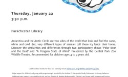 FREE Programs at The Parkchester Branch Library January 2015
