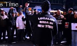 THE MMA JOURNALIST: No Movement on MMA Vote in NY Assembly