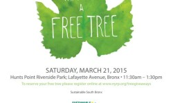Pick up a Free Tree this Saturday