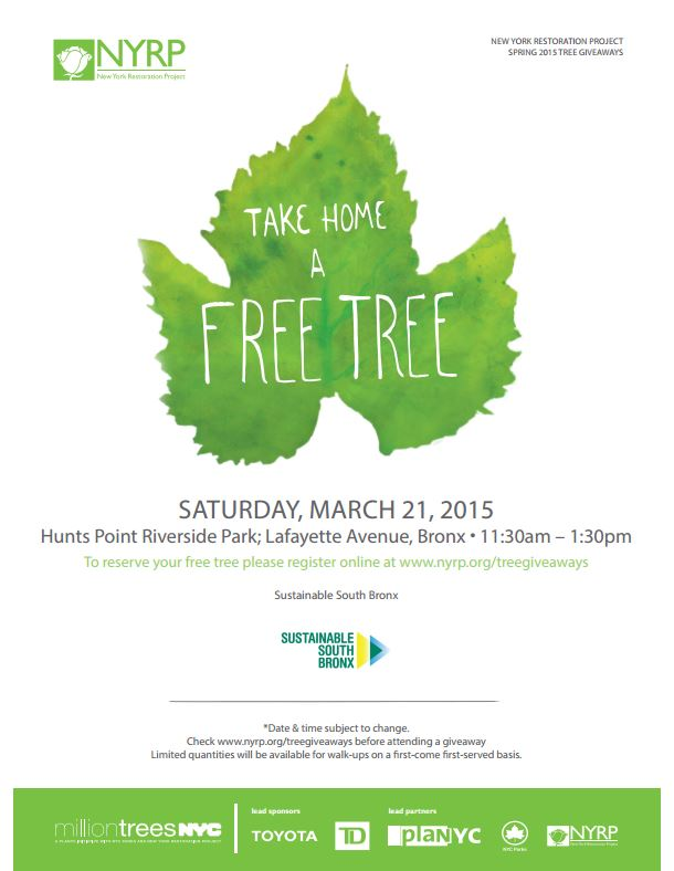 Free Trees_Sustainable South Bronx