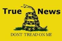 True News-logo