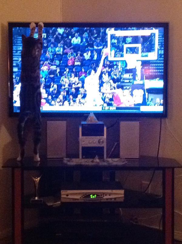 Milan_Enjoys NBA
