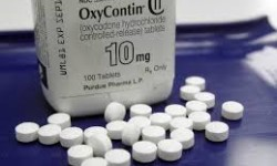 Physician-Owner Of Bronx Clinic Convicted Of Distributiing More Than Five Million Oxycodone Pills