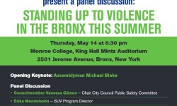 Standing up to violence in the Bronx, Panel Discussion, May 14