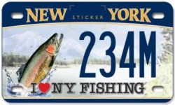 CUOMO: ADVENTURE CUSTOM LICENSE PLATES FOR MOTORCYCLES