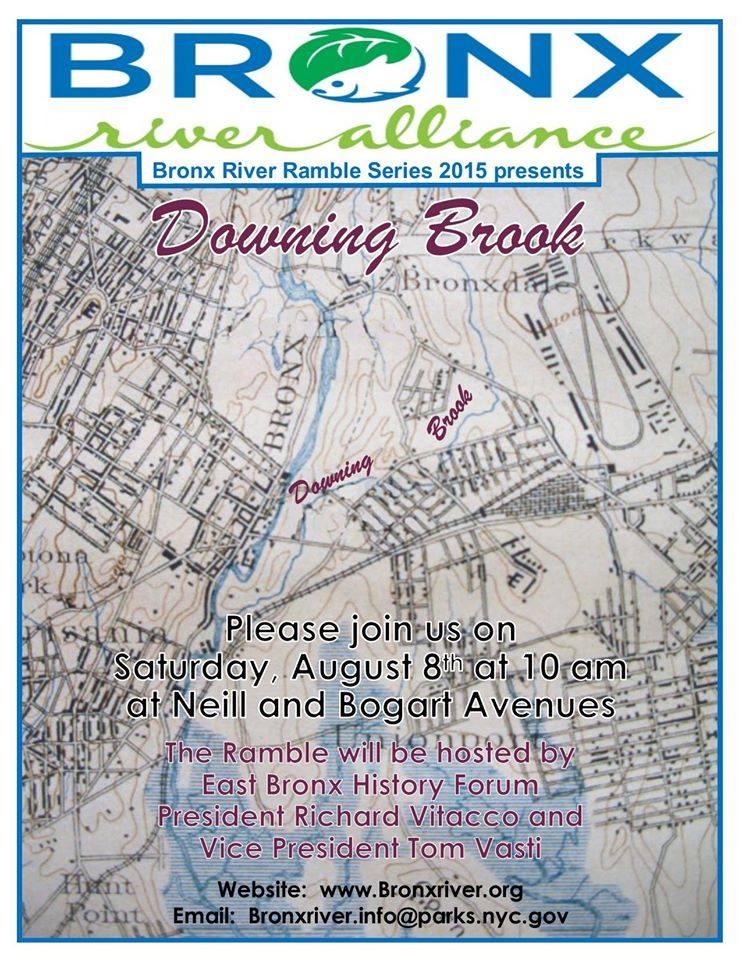 Downing Brook