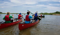 Nature & Outdoors – Free Canoeing in the Park, Perseid Meteor Shower, Dragon Boat Festival, And More
