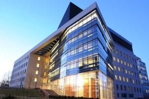 Einstein College