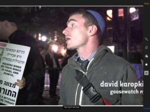 David Karopkin, J.D., Founder and Director of Goose Watch NYC
