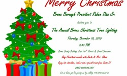 Annual Bronx Christmas Tree Lighting, 12/10