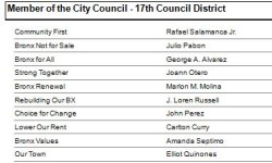 Bronx 17 City Council District: DON'T CAST A BLIND VOTE! BE INFORMED