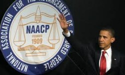 Profile America: The NAACP Founded