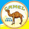 camel-cigs-1913