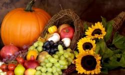Bronx Community Thanksgiving Meals List