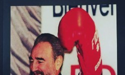 Book Review | Knockout: Fidel Castro Visits The South Bronx