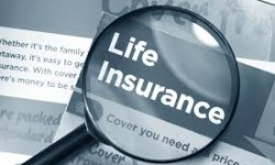 Profile America: First Life Insurance Policy