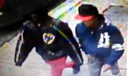 POLICE SEEK CELLPHONE THIEVES IN NORWOOD
