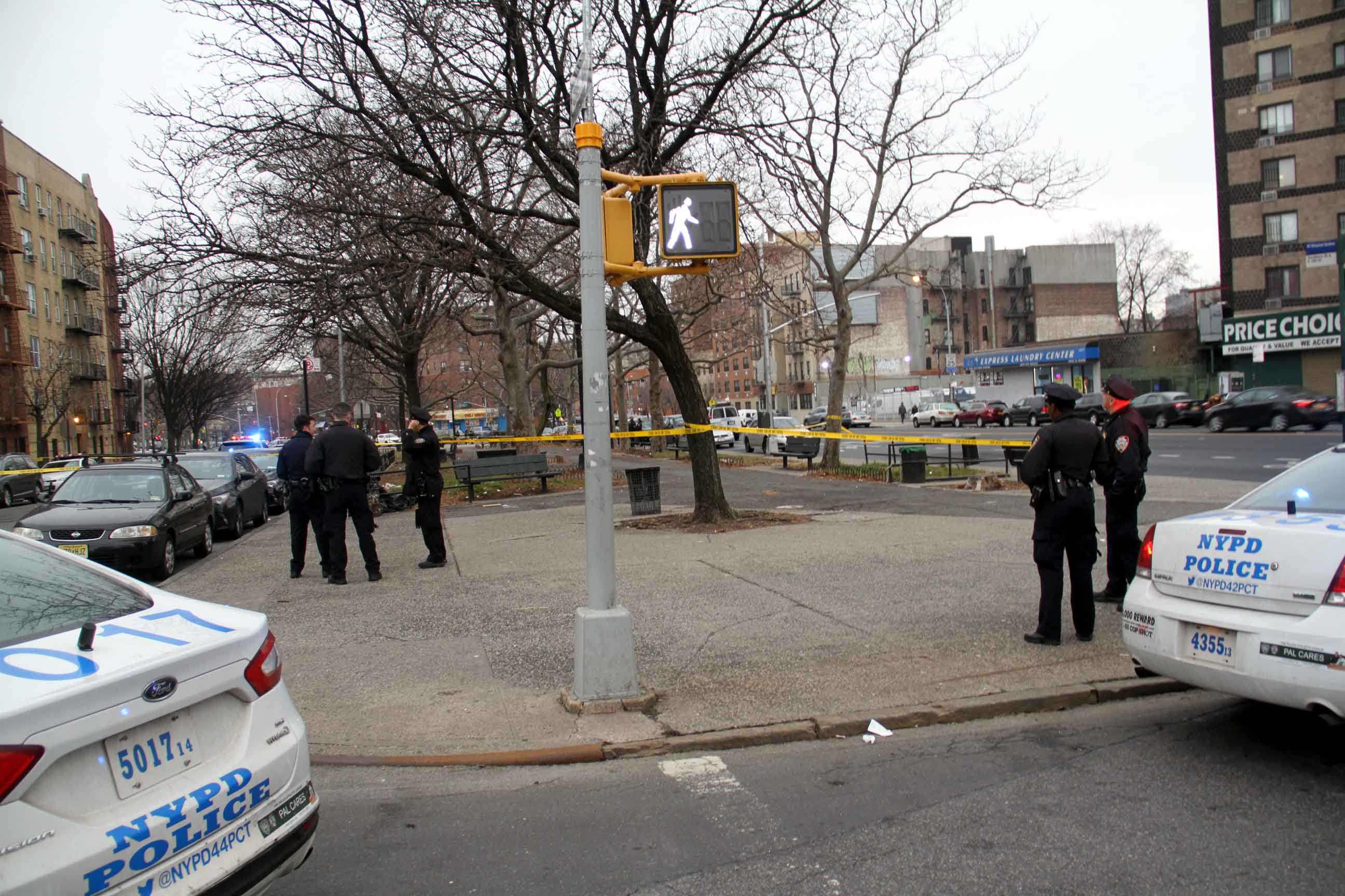 Gunfire Erupts in West Farms near Crotona Park Malls