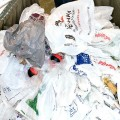 plastic-bag-litter-2