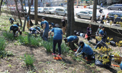 United by Blue and Bronx River Alliance Concrete Plant Park Cleanup – March 11th