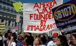 IDC ANNOUNCES IMMIGRANT DEFENSE COALITION PARTNERS AND 1-800 EMERGENCY HOTLINE