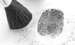Fingerprint Identification. Image by Forensic Assurance.