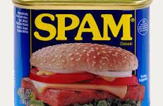 Profile America: Spam