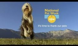 Welcome to National Pet Week®!  www.petweek.org