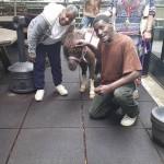Hope Center Horse 2 6-5-17