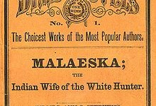 Cover of Malaeska, the Indian Wife of the White Hunter (1860)